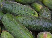 KE: Rosja powinna natychmiast znieść zakaz importu warzyw