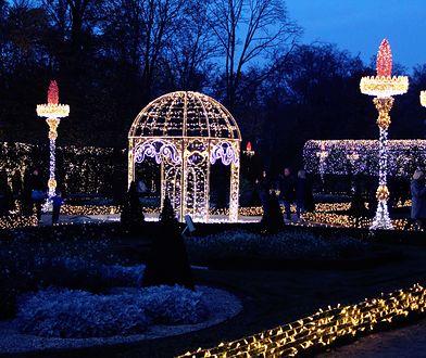 Królewski Ogród Światła. Niezwykła atrakcja w Wilanowie