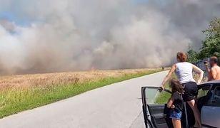 Z pożarem walczy 13 zastępów strażaków