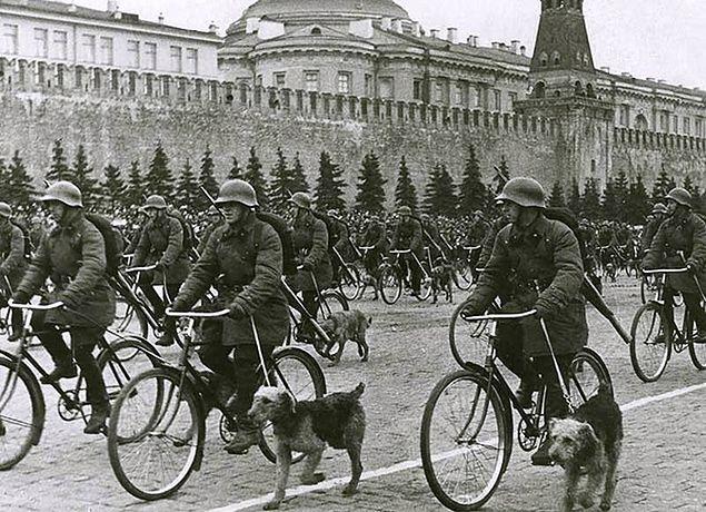 Żołnierze Armii Czerwonej na defiladzie z psami przeciwpancernymi na Placu Czerwonym w Moskwie w 1938 r.