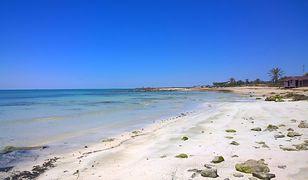 Słoneczna Djerba przyciąga turystów przez cały rok