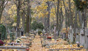 """Trzaskowski: wydaliśmy 1 ml zł na przygotowania, a rząd dopiero zamyka cmentarze. """"Kpina"""""""