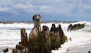 Bałtyk umiera. Na dnie morza czai się wiele zagrożeń