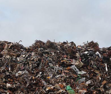 Śląsk. Wojewoda śląski górą w sporze z metropolią, budowa spalarni śmieci zagrożona