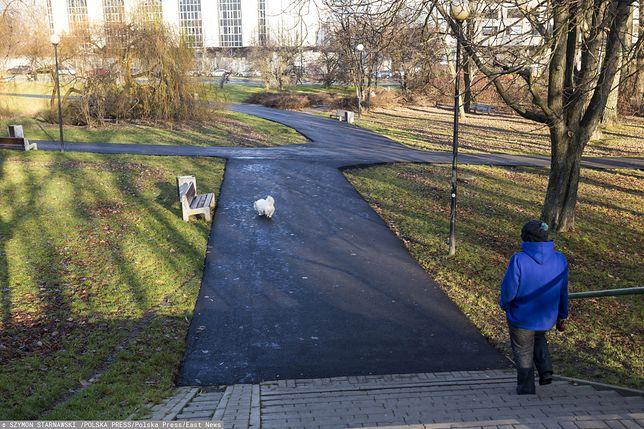 Warszawa. Park Morskie Oko z nowymi asfaltowymi alejkami