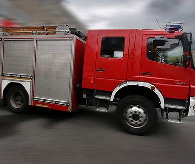 Po ugaszeniu pożaru pola trawy w Poznaniu strażacy znaleźli zwłoki mężczyzny