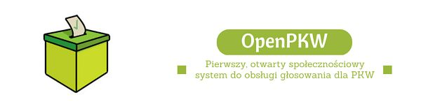 Polscy internauci przeciwko komisji wyborczej
