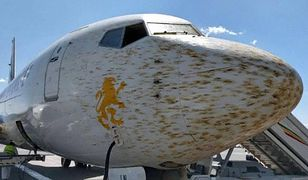 Oblepiony samolot przeszedł szczegółową kontrolę