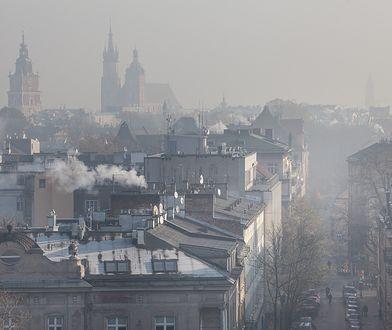 Mieszkańcy Krakowa żądają podjęcia natychmiastowych działań