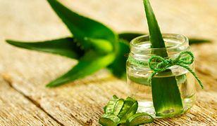 Aloes dla urody. 11 kosmetyków, które zrobisz w domu