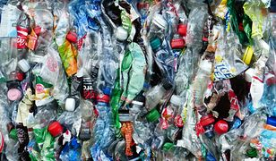 Nowy sposób na plastikowe śmieci. Będziemy mogli je jeść?