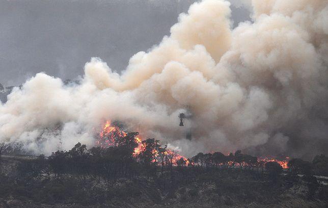 Australia: Pożary mogą trwać jeszcze kilka miesięcy