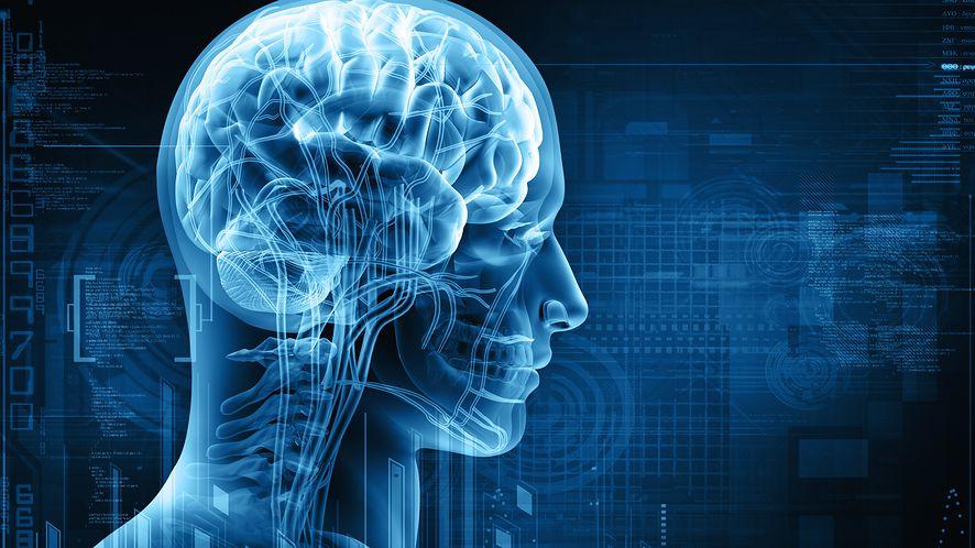 """Hodowlane """"mózgi w słoikach"""", by stworzyć prawdziwą sztuczną inteligencję"""