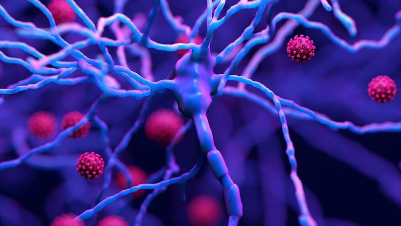 """""""Długi ogon"""" koronawirusa. Nowy, niepokojący objaw COVID-19 u kobiet"""