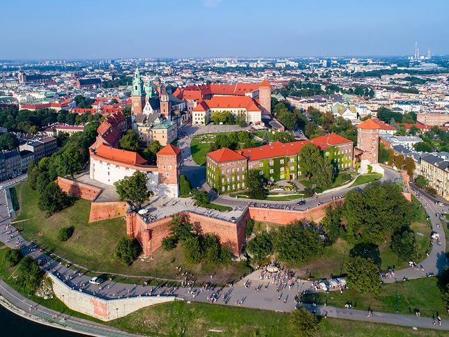 Odkrycie na Wawelu. Archeolodzy byli zaskoczeni