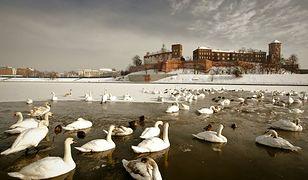Zimowe atrakcje Krakowa