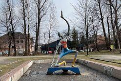 Ruda Śląska. Olimpijczyk odzyska blask