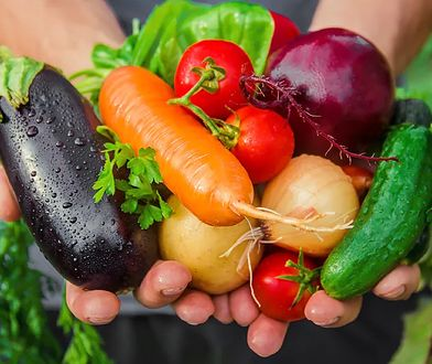 Niezbędnik początkującego wegetarianina (i nie tylko)