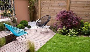 Podpowiadamy, jak uniknąć najczęstszych błędów w ogrodzie