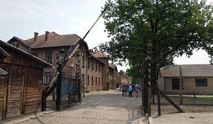 Wielka Brytania. Burza po antyszczepionkowych ulotkach. W tle grafika obozu Auschwitz