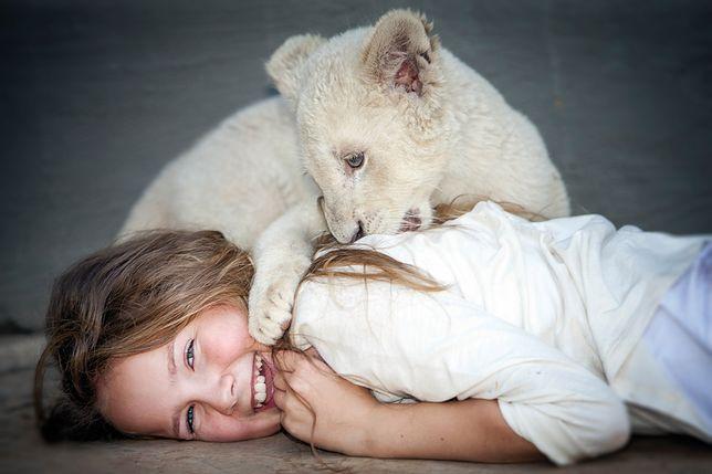 """Przygodowy film dla całej rodziny. """"Mia i biały lew"""" wkrótce w kinach"""