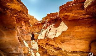 Skarby pustyni Negew