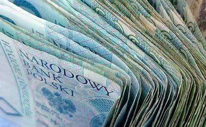 Polacy są rozsądni finansowo? Większość spłaca tylko jeden rodzaj kredytu