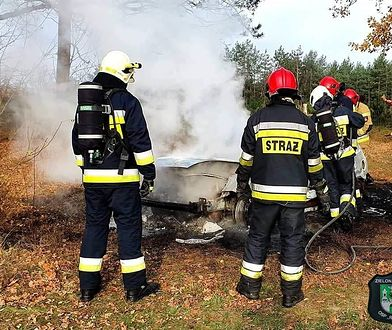 Makabryczne odkrycie pod Zieloną Górą. Dwie łopaty, szczątki i spalony samochód