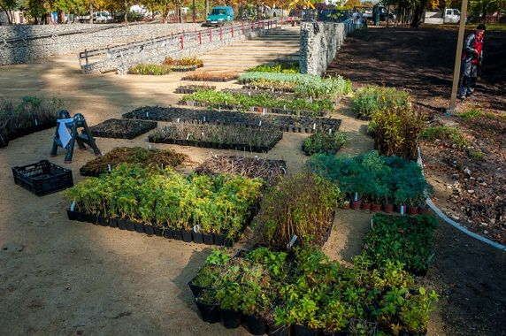 W sosnowieckim parku przy egzotarium ruszyły prace przy sadzeniu roślin.