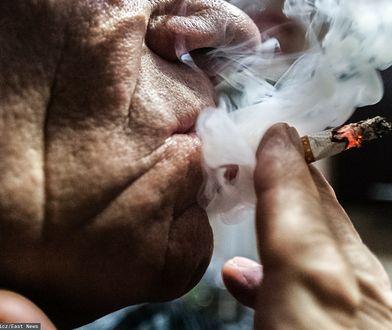 Palenie głupa. Jak koncerny tytoniowe rozgrywają Polaków