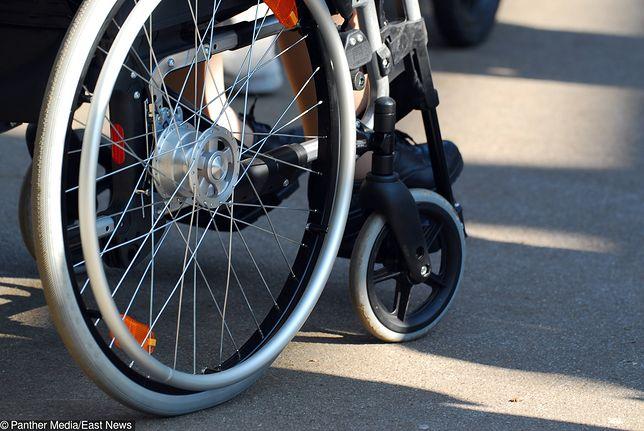 CV niepełnosprawnego Jędrka: ma 20 lat, może pilnować rybek w akwarium, nie gryzie