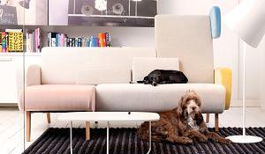 Meble do małego salonu: sofa