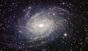 Pomiar odległości w Drodze Mlecznej sprawia problem