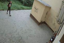 """W """"patriotycznych"""" ubraniach zniszczyli budynek uczelni"""