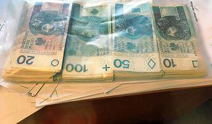 Nietypowy sposób wyłudzania pieniędzy. Na kota od księdza, egzotyczną papugę lub słodkiego pieska
