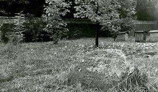 Zespół cmentarzy na Powązkach pomnikiem historii [ZDJĘCIA]