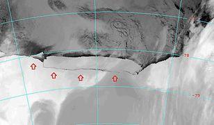 Antarktyda się kurczy i niewiele możemy zrobić