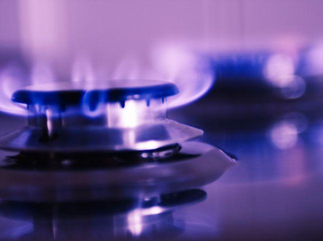 Jaką kuchenkę gazową kupić?