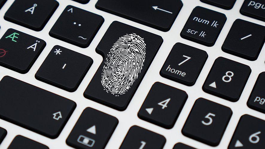 Masa danych była dostępna w sieci dla każdego, fot. Pixabay