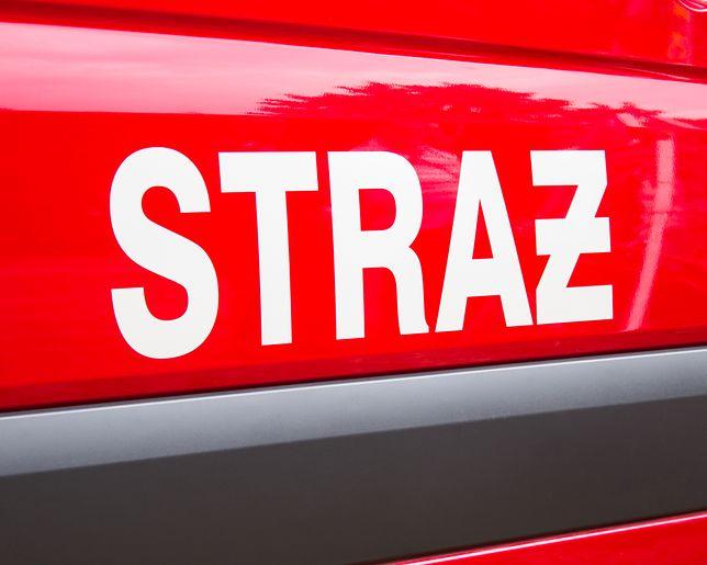 Ogień gasiło 8 zastępów straży pożarnej.
