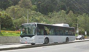 Autobus elektryczny pokonał 250 km z 80 pasażerami na pokładzie
