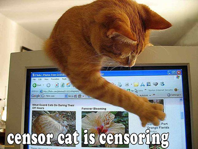 http://img04.deviantart.net/93d5/i/2010/300/b/f/censorcatbydoom1272-d31m7bo.jpg