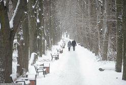 Pogoda długoterminowa. Ekspert z IMGW o nadchodzącej zimie