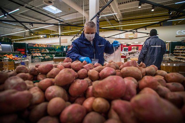 Ziemniaki są w tym roku wyjątkowo tanie.