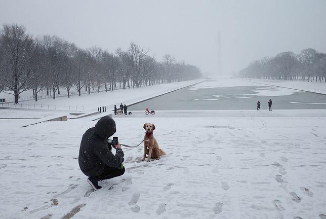 USA. Orlena zbliża się do wschodniego wybrzeża. W Waszyngtonie po raz pierwszy od trzech lat spadł śnieg