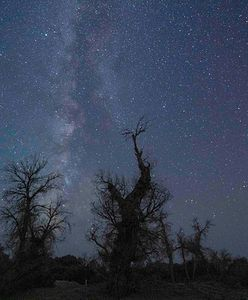 Perseidy 2021. Noc spadających gwiazd przed nami. Jak, gdzie i kiedy oglądać perseidy?