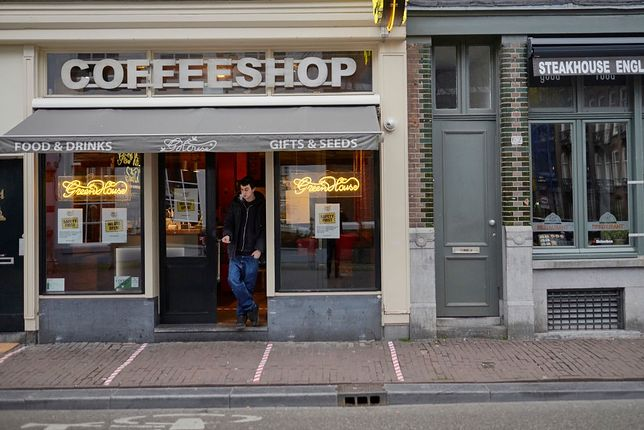 Coffee shop, Holandia