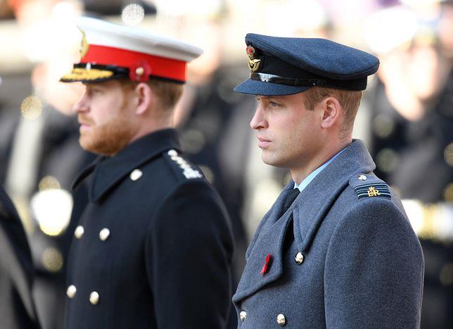Książę William i książę Harry nareszcie mówią jednym głosem