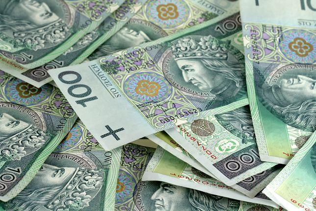 Złoty najmocniejszy do euro od wakacji 2018 r.