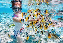 Znasz snorkeling? Podwodna rozrywka dla całej rodziny
